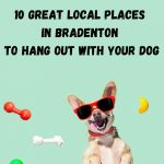 10 Pet Friendly Places in Bradenton