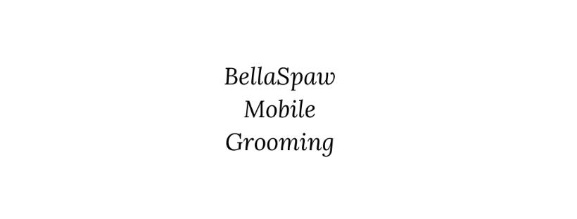 Bellaspaw mobile grooming bradenton