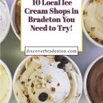 The 10 Best Ice Cream Shops in Bradenton