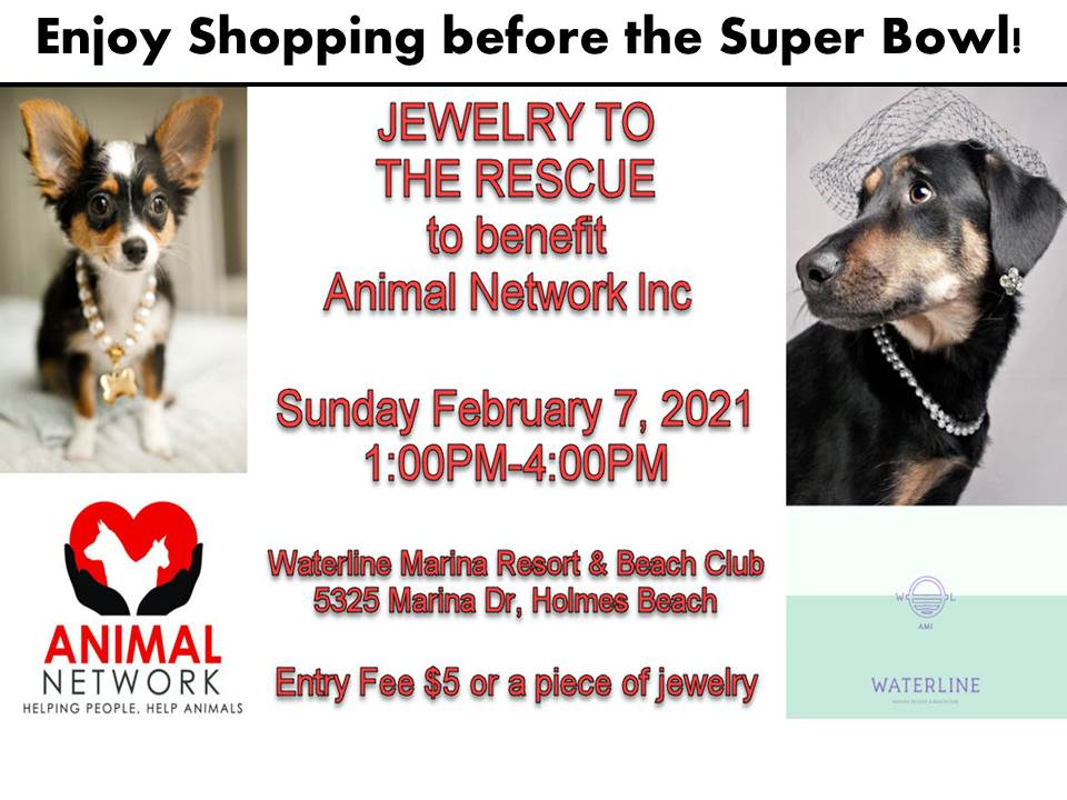 jewelry to the rescue 2021 flyer