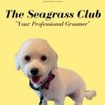The Seagrass Club: Your Professional Groomer in Bradenton