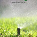 Bradenton Inventor Creates the Grasshole System