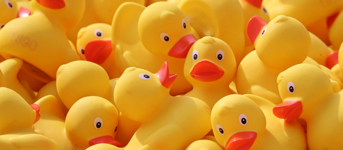 Lucky Ducky Race for Pace